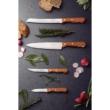 Tramontina Dynamic kenyérvágó kés 31 cm